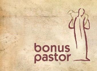 Rövid terápiás programot szervez a Bonus Pastor Alapítvány
