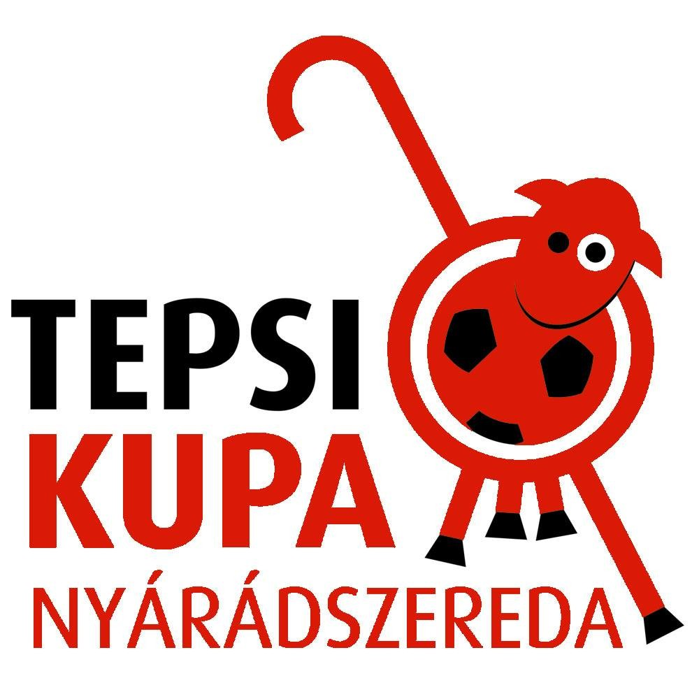 7. TEPSI kupa Nyárádszeredában