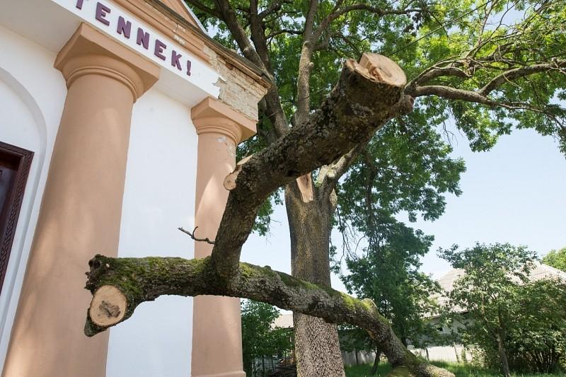 Lezuhanó faág károsította a szészármai református templomot